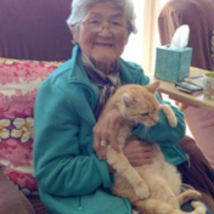 HooNani Day Center client holds a therapy animal